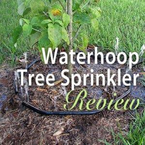 Waterhoop Tree Sprinkler