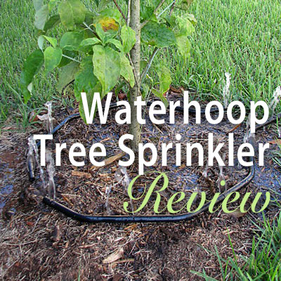 Waterhoop Tree Sprinkler Review