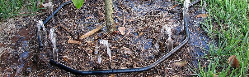 Waterhoop header image
