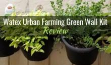 Watex Urban Farming Green Wall Kit: Product Review