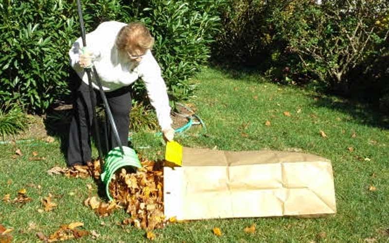amazing-rake-scooping