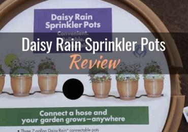 daisy-rain-sprinkler-pots-review-header
