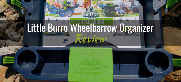 header-little-burro-product-review