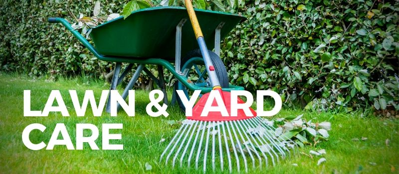 rake and wheelbarrow for lawn and yard care