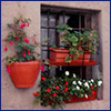 A two tier window box filled with impatiens and geraniums
