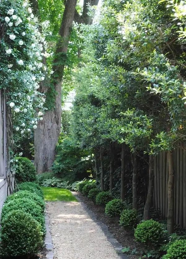 15 Absolutely Stunning Side Yard Decor Ideas You Must See on Side Yard Walkway Ideas id=74820