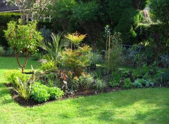 May 23, A Nandina domestic and a drymis winteri add a bit of height to the middle of the border.