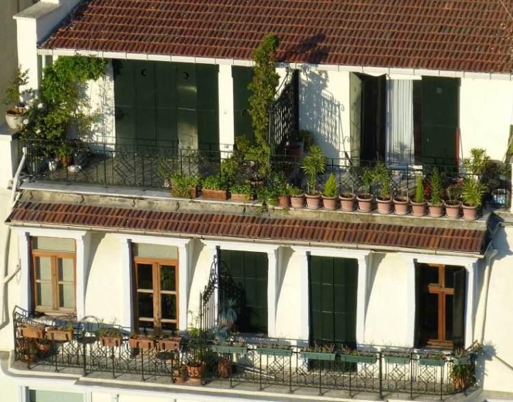 Balcony Garden Design In India A Full Guide Gardening Tips