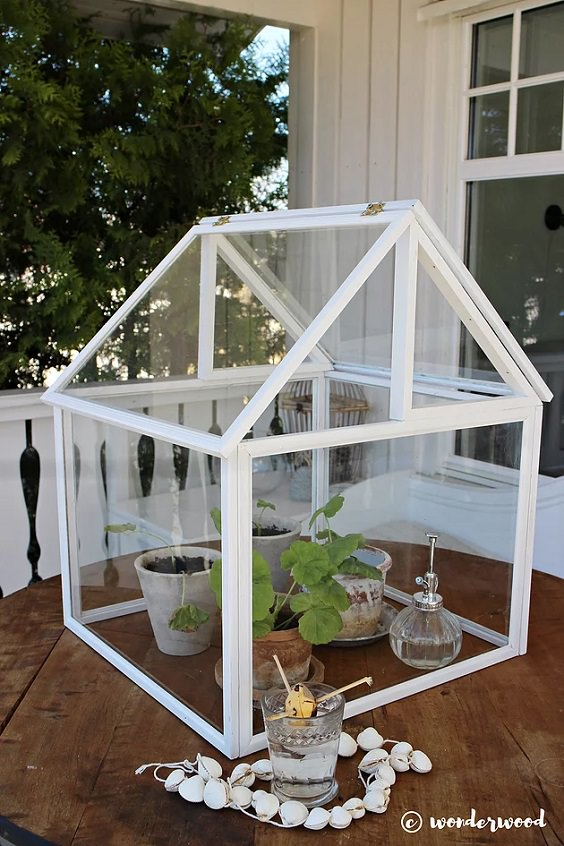10 Easy Diy Mini Greenhouse Ideas Gardening Viral
