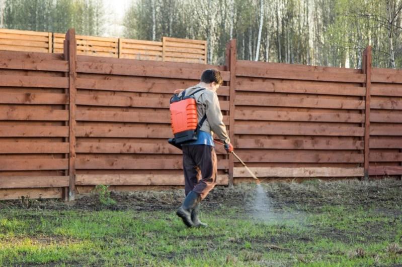 spray herbicide  clean up grass