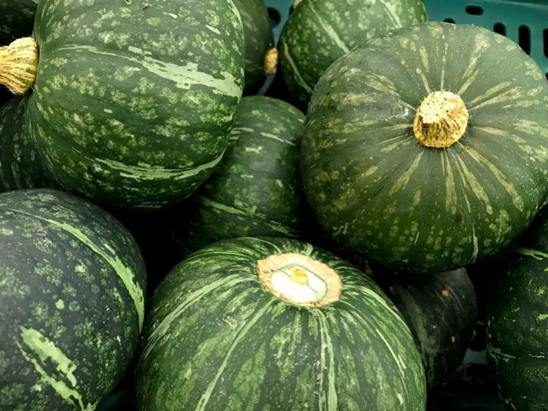 Winter squash in the market