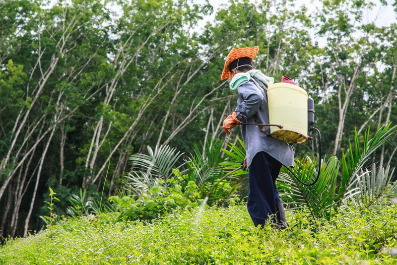 How to choose the right backpack sprayer for yourself
