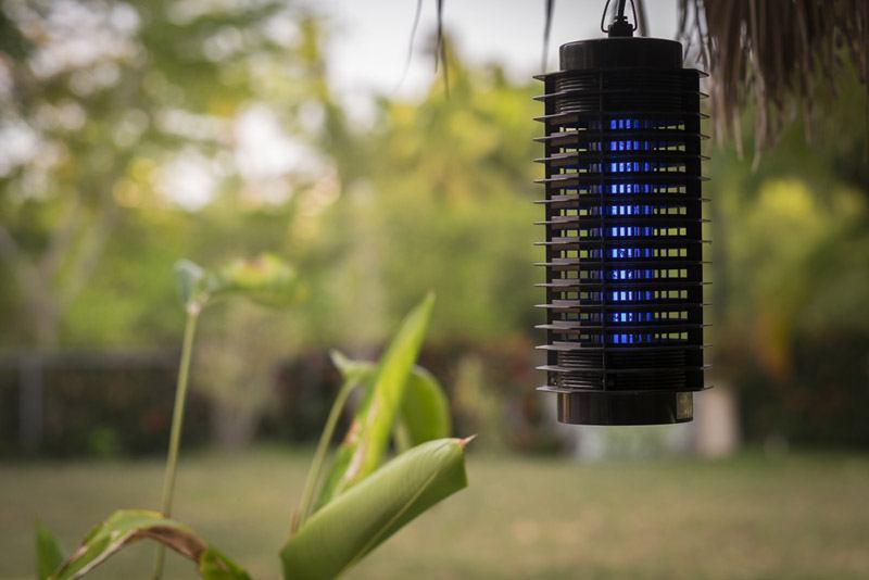 How does a bug zapper work