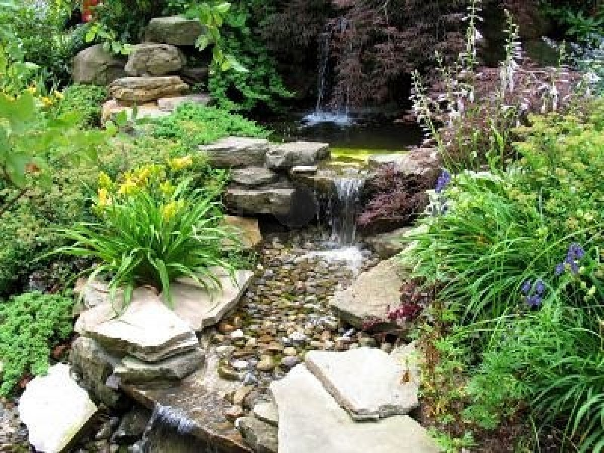 635637-close-up-of-a-small-stepped-waterfall-and-pool-in-a ... on Rock Garden Waterfall Ideas  id=58837