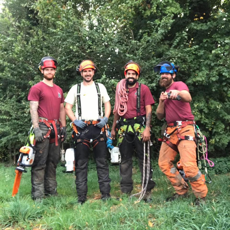 The full Garden Knight tree team wearing safety gear, climbing harness's and chainsaws.