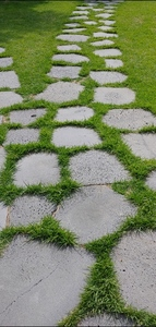large_stone_with_grass_pathway