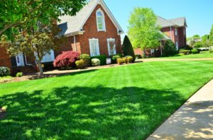 5 tips Yard Clutter