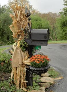 mailbox_cornstalks