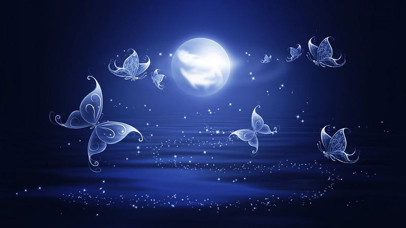Подманивание ночных бабочек