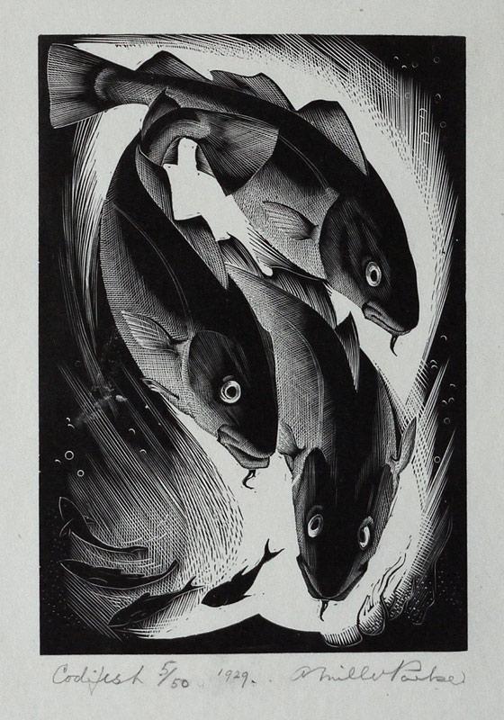 Agnes Miller Parker – Codfish (1929)