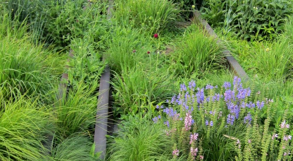 Piet Oudolf is Designing a Garden in Detroit