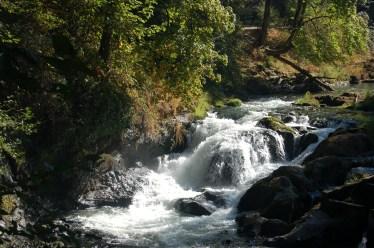 Tumwater Falls Park 1