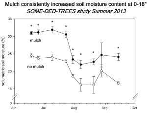 "Fig. 3 Mean soil moisture at 0-18"" depth for London planetrees with and without mulch. * indicates means for a given date are different at 0.05."