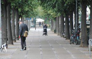 Fredicksberg alle in Copenhagen - pedestrian view