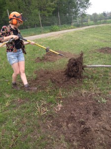 Nicole excavating roots with the air spade