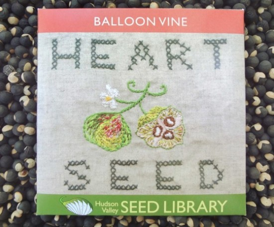 seed packet 1a