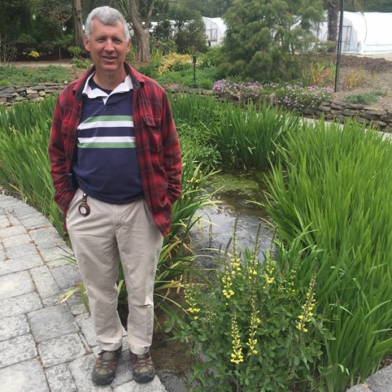 Tony Avent in the garden. Could you imagine a Baptisia growing in a bog?