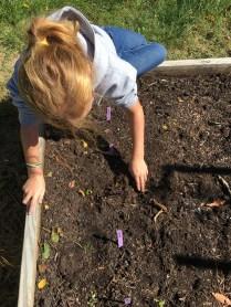 Planting Winter Seeds