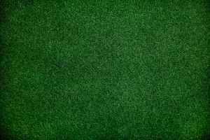 A birds-eye photo of freshly cut grass