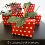 Apple Junior Mints