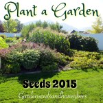 Seed Planting 2015