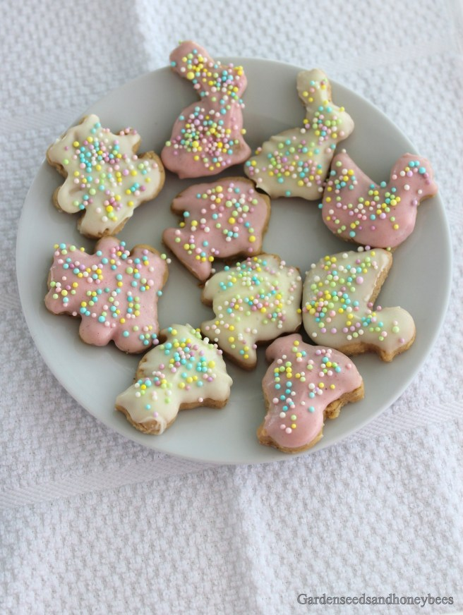 Homemade Circus Cookies