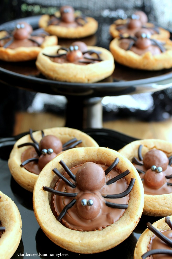 Peanut Butter Cookie Spiders