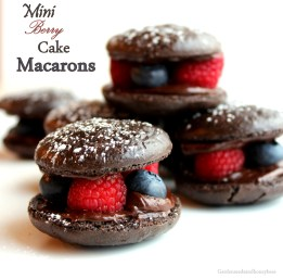 Mini Berry Cake Macarons