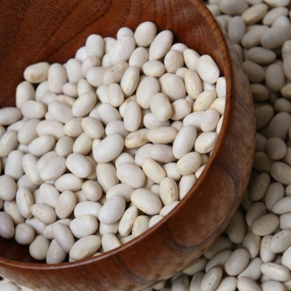 pdf phaseolus bean improvement in tanzania 19592005 - 800×800