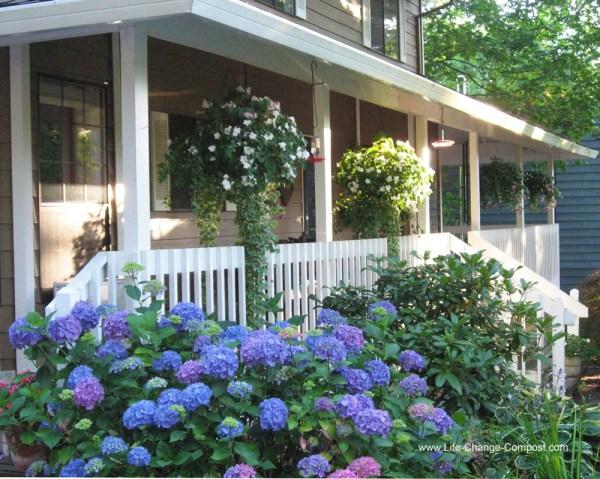 Porch in August (1)