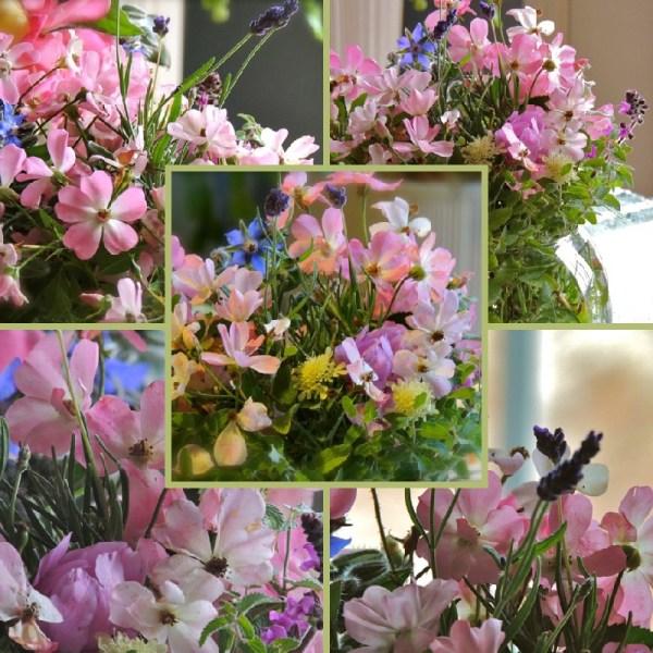more roses vase