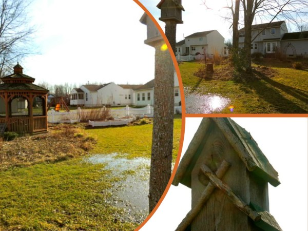 birdhouse collage