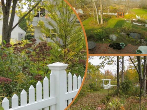 bog garden fall