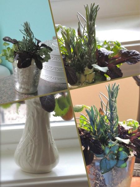 lavender vase collage