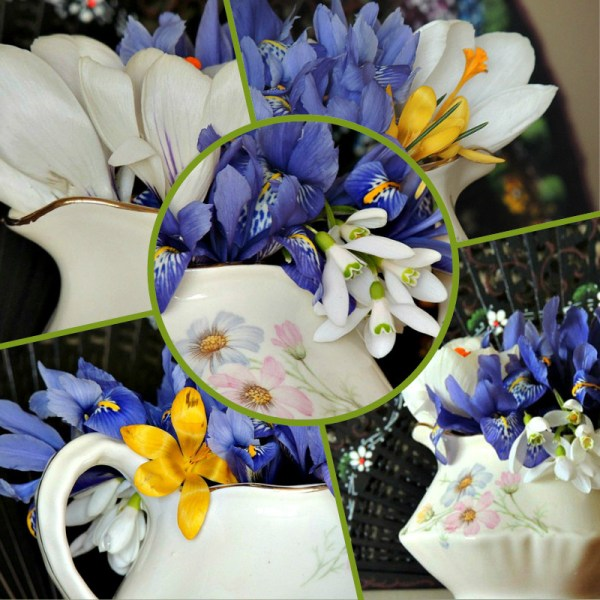 iris spring indoor vase collage