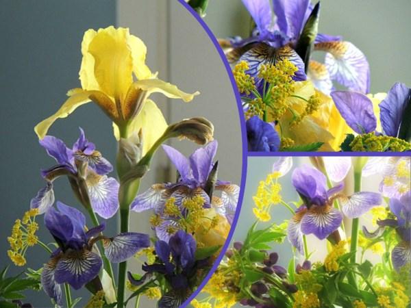 bday bouquet