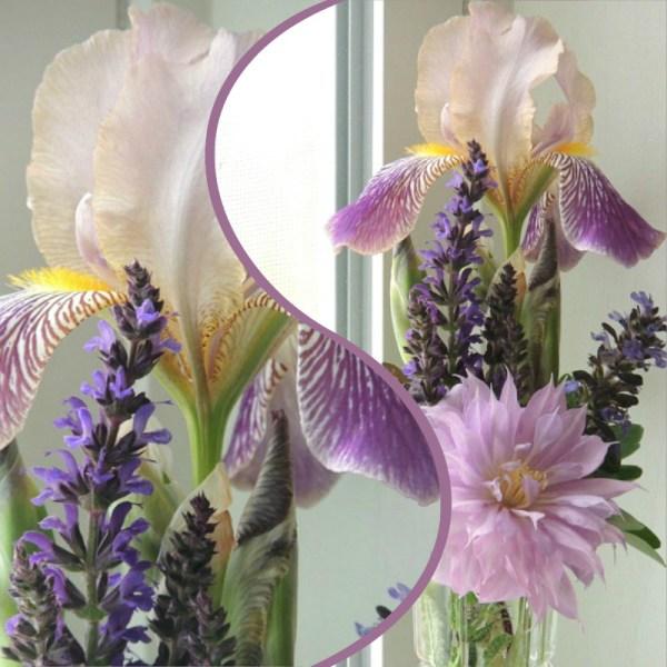 sm purple vase