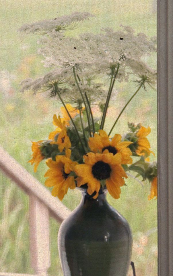 In A Vase On Monday Stormy Weather Gardens Eye View