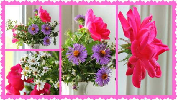 rose aster vase collage