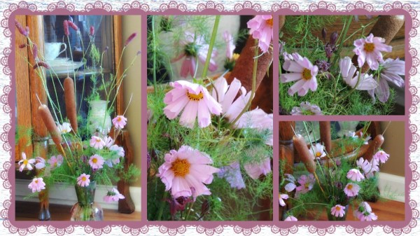 cosmos vase collage
